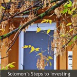 Solomns steps to investing success