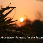 Abundance: Forecast For the Future?
