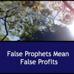 False Proohets Mean False Profits